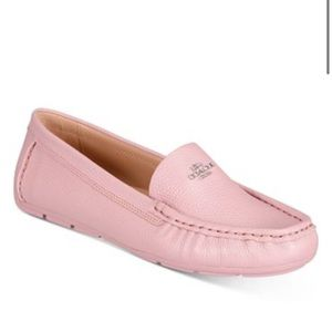 Coach Marley loafers blossom